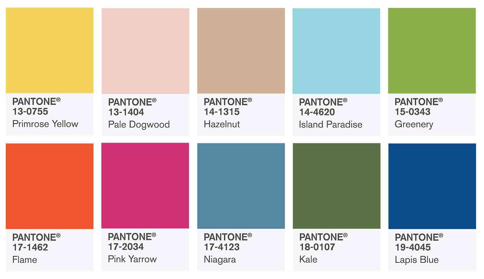tendnte-culori