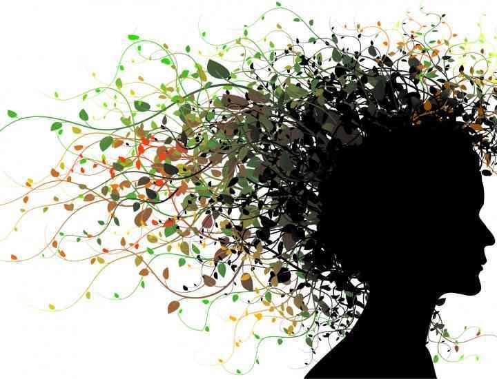 Remedii împotriva căderii părului – A doua parte