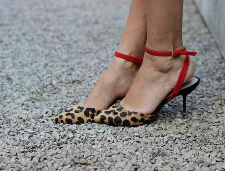 Pantofii kitten