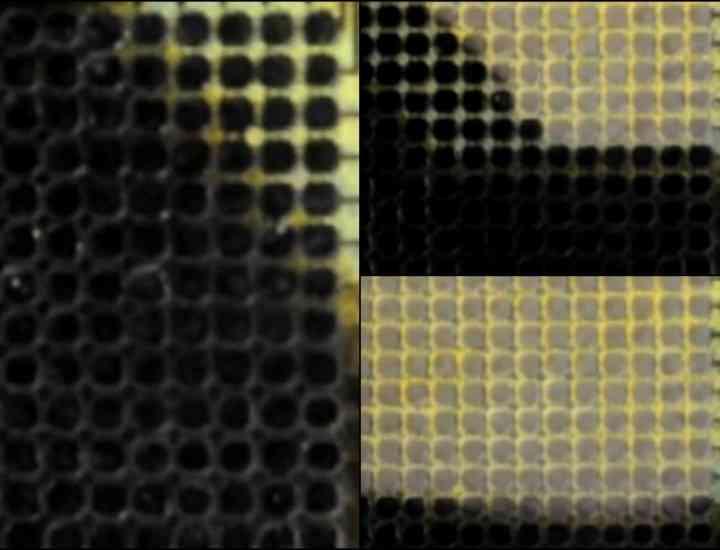 A fost inventat materialul flexibil care îşi schimbă culoarea pentru a imita mediul