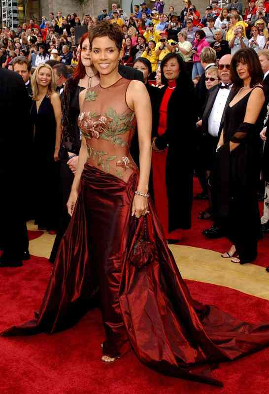 Halle-Berry-in-Elie-Saab