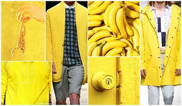 culori la moda barbati-limoncello