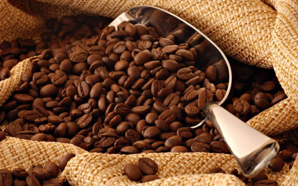 sampon cu cafea pentru par