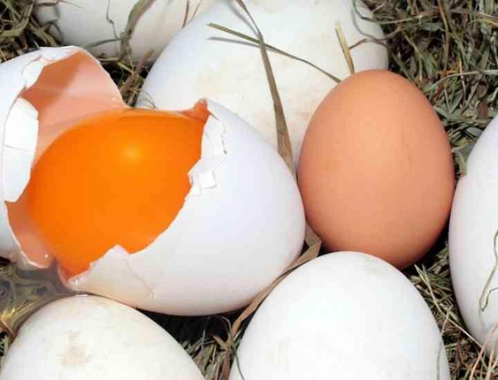 Rețete cu ou pentru un păr sănătos