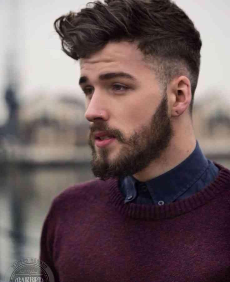 barba-mixt