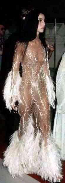 cher-cu-naked-dress